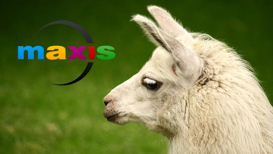 Лама и Maxis